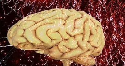 بنية دماغية غير عادية تدفع البالغين إلى الكذب والسرقة والعنف! image