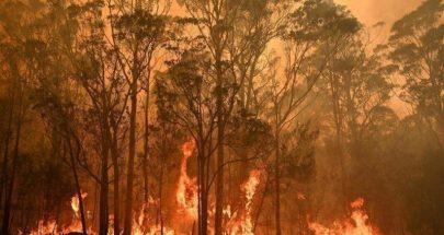 كارثة الحرائق طال تأثيرها 75 بالمئة من الاستراليين! image
