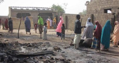 الأمم المتحدة: مقتل 22 قرويا بينهم 14 طفلا في الكاميرون image