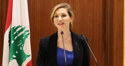 جمالي: لبنان في عين العاصفة لناحية تفشي الوباء image