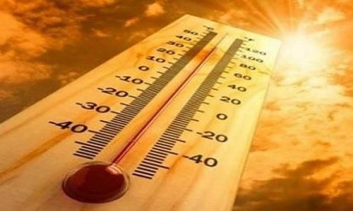 الحرارة تصل الى 35 درجة... image