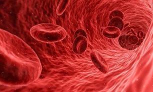 """""""الجينات القافزة"""" يمكن أن تحمي من نوع فتاك من سرطان الدم image"""