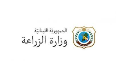 وزارة الزراعة تعلن عن استدراج لعروض.. ما القصة؟ image