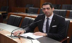 حنكش: الانتخابات المبكرة ستأتي بمجلس نيابي جديد image