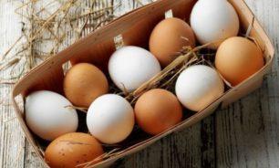 """البيض """"مقطوع""""... إلى أن يُرفع سعره! image"""
