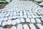 بالفيديو: ضبط أضخم عملية تهريب مخدرات في تاريخ لبنان image