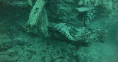 اكتشاف غابة تحت الماء عمرها 60 ألف عام قد تساعد في تطوير أدوية image