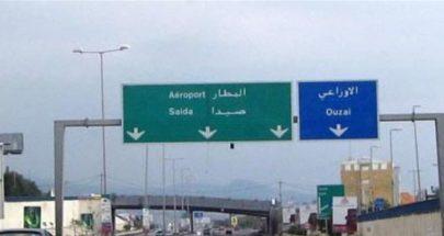 """""""عجل"""" شارد على طريق انفاق المطار! image"""