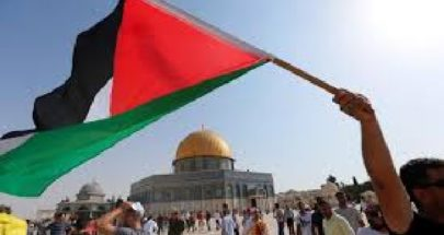 فلسطين بين المشاعر والوقائع image