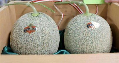 بيع زوج من البطيخ مقابل 1114 دولاراً في مزاد ياباني image