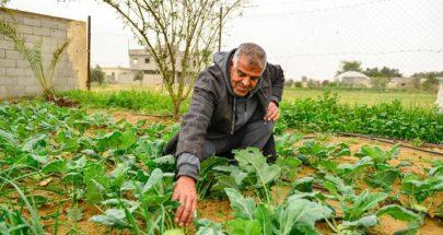 """كورونا الأرياف... زراعة و""""بيسّينات"""" image"""