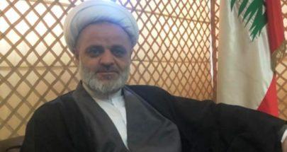 زغيب: سكوت السلطة والاحزاب عن الاحداث في بعلبك الهرمل وصمة عار image
