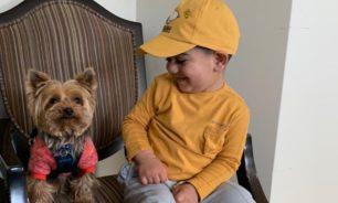 هل تؤثر حيازة الكلاب على سلوكيات الأطفال؟ image