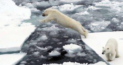 هل يسبب ذوبان الجليد الأزلي استيقاظ الفيروسات القديمة؟ image