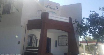 افتتاح أول فندق لرعاية الحيوانات في تونس image