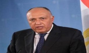 وزير خارجية مصر اتصل بالبطريرك الراعي: مستعدون لمساعدة لبنان image
