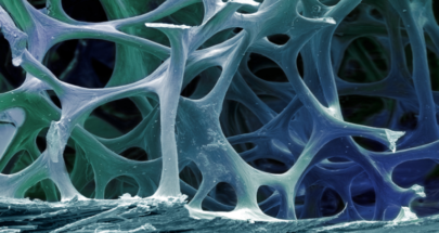 كيف شكلت النجوم المتفجرة الكالسيوم في أسناننا وعظامنا!؟ image