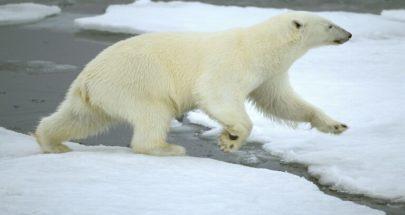 تسجيل بداية سريعة لكارثة مناخية في القطب الشمالي image