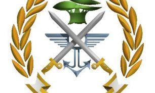 ماذا طلب الجيش من المواطنين؟ image