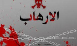 الدولة تساهم في دعم الإرهاب image