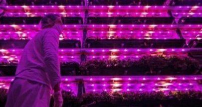 """""""مزارع زهريّة"""" لمواجهة تدابير العزل في ظلّ كورونا image"""