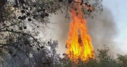 بالصور حرائق كبيرة في منطقة اللبونة... إسرائيل تحرق أشجار لبنان! image