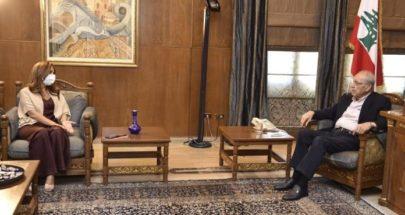 بري عرض الاوضاع مع وزيرة الدفاع في حكومة تصريف الاعمال image