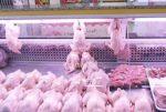 صدر الدجاج المدعوم... يغطّ ويطير! image
