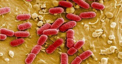 اكتشاف وسيلة مضادة لعدوى قاتلة image