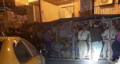 صورة لأشخاص داخل أقفاص تثير انتقادات حادة في سوريا image