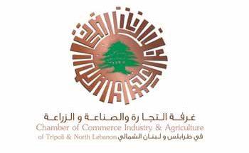 دبوسي إستقبل ذوق: نسعى الى تأمين مصالح لبنان من طرابلس الكبرى image