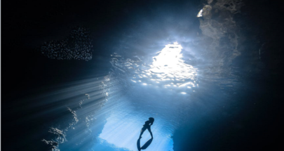 """اكتشاف """"ناطحة سحاب"""" مرجانية تحت الماء في الحاجز المرجاني العظيم! image"""