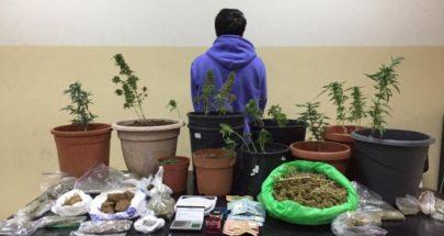 شعبة المعلومات توقف مروج مخدرات في ساحل علما وتضبط كمية منها image