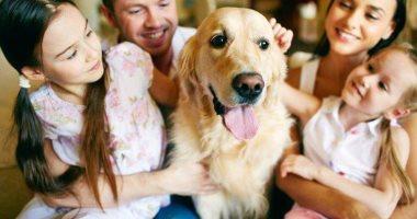 دراسة تكشف تمتع الكلاب بالقدرة على كشف الكذب image