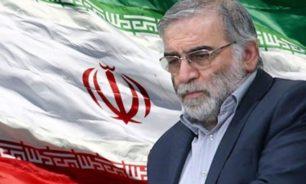 """رئيس القضاء الإيراني يتهم """"عملاء الصهيونية العالمية"""" باغتيال محسن زاده image"""