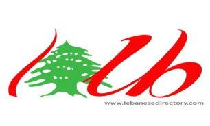 منصة الكترونية فريدة من نوعها تجمع اللبنانيين في كل انحاء العالم image
