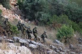دبابة معادية خرقت السياج في كروم الشراقي في ميس الجبل image
