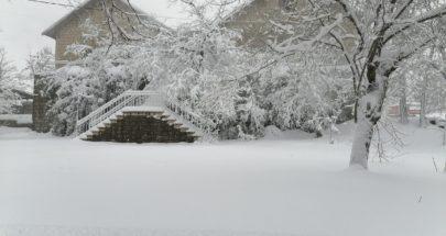 جويس تكسو لبنان بالثلوج... image