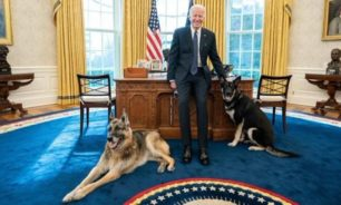 كلب بايدن يعض ضابط أمن.. والرئيس الأميركي يتخذ قراراً مهماً image