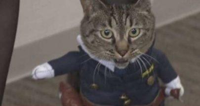 تعيين قطة مديرة شرطة تكريما لدورها في إنقاذ شخص image