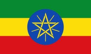 السفير الأثيوبي زار زحلة والتقى رئيس بلديتها image