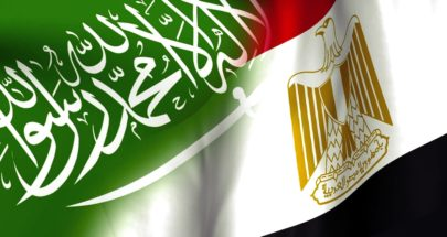 تناغم مصري – سعودي image