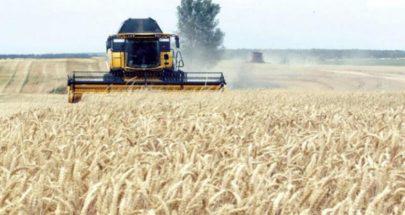 أسواق الحبوب العالمية تواجه أزمة محتملة image