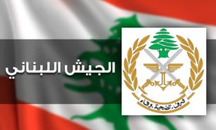 الجيش: توقيف مطلوب لوجود مذكرات توقيف عدة في حقه image