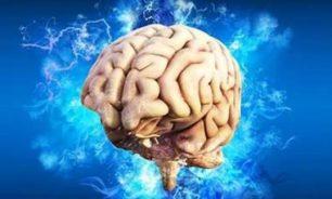 تحذير.. هذه المواد الغذائية تشكل خطرا على الدماغ! image