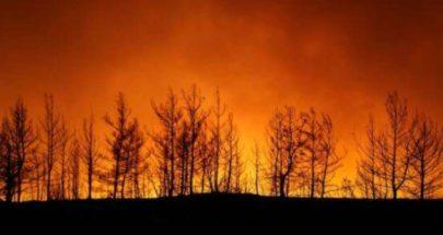 4 قتلى في حرائق غابات بجنوب تركيا image