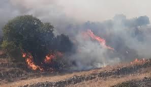 موجة الحرائق تصل الى جرود الهرمل... والأهالي يناشدون الجيش image