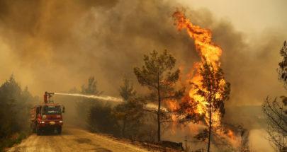 أردوغان: التحقيقات مكثفة للكشف عن ملابسات حرائق الغابات.. image