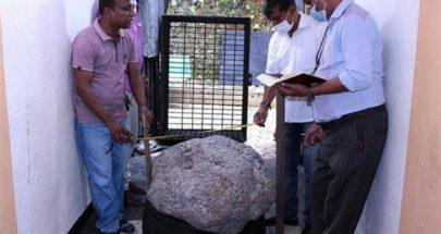 اكتشف حجراً ضخماً من الياقوت في الفناء الخلفي لمنزله image