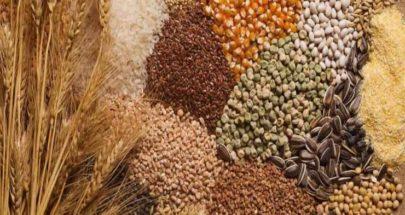 الأمن الغذائيّ العربيّ في خطر image